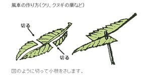 第二面ホオノキ風車イラスト
